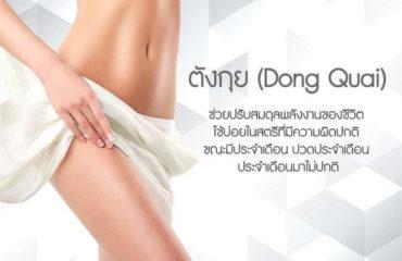 ตังกุย-(Dong-Quai)-ส่วนประกอบของอาหรเสริม