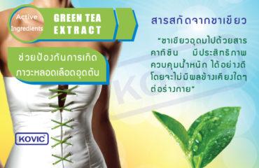 ลดความอ้วนสารสกัดจากชาเขียว