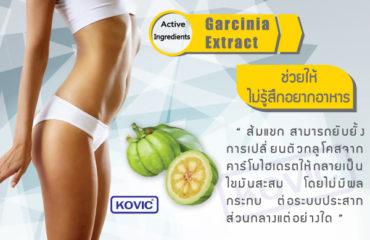 ลดความอ้วน-ส้มแขก