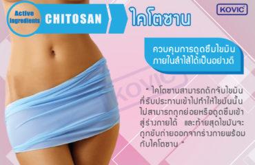 ลดความอ้วน-ไคโตซาน