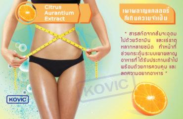 สารสกัดจากส้ม