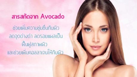 สารสกัดจาก-Avocado