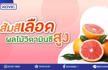 ส้มสีเลือด ผลไม้วิตามินซีสูง