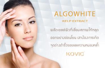 สารสกัดจากสาหร่ายทะเลสีน้ำตาล Algowhite (Kelp Extract) ส่วนประกอบการผลิตเครื่องสำอาง