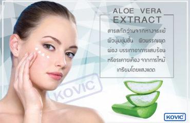 สารสกัดจากว่านหางจระเข้ (Aloe Vera Extract) ส่วนประกอบการผลิตเครื่องสำอาง