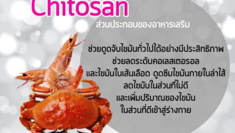 Chitosan-ส่วนประกอบของอาหารเสริม