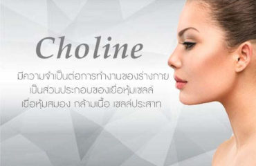 Choline-ส่วนประกอบอาหารเสริม