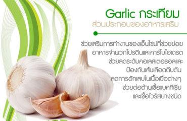 Garlic-กระเทียม-ส่วนประกอบของอาหารเสริม
