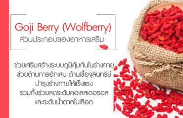 Goji-Berry-(Wolfberry)--ส่วนประกอบของอาหารเสริม
