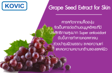 Grape-Seed-Extract-for-Skin