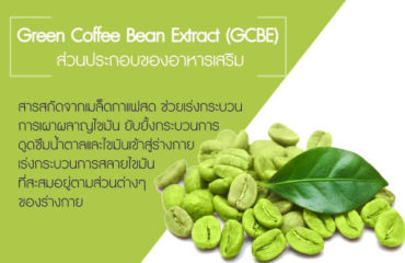 Green-Coffee-Bean-Extract-(GCBE)
