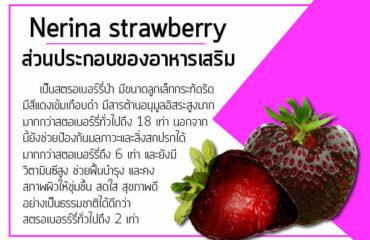 Nerina-strawberry-ส่วนประกอบของอาหารเสริม