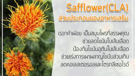 Safflower(CLA)-ส่วนประกอบของอาหารเสริม
