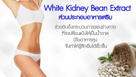 White-Kidney-Bean-Extract-ส่วนประกอบอาหารเสริม